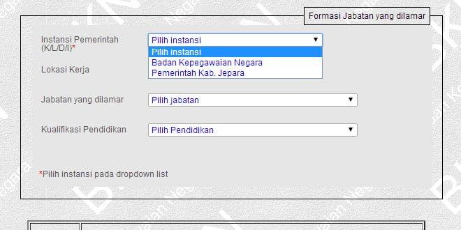 Lowongan CPNS 2014 BKN dan Pemkab Jepara - CPNS INDONESIA