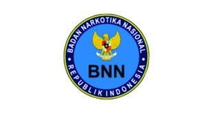 Lowongan CPNS BNN 2014