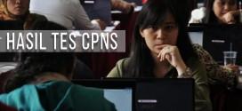 40 Pemda Belum Gelar Tes CPNS 2014