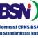 Formasi Lowongan CPNS BSN