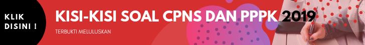 Kisi-kisi Soal CPNS dan PPPK 2019 Terbaru